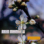 reid_muchow_equinox_autumn_remix1x1.jpg