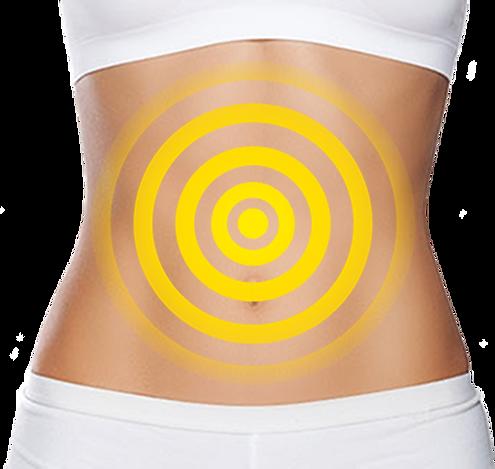 gut health ingredient