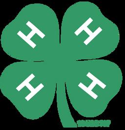 logo4h