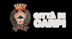 logo comune carpi.png