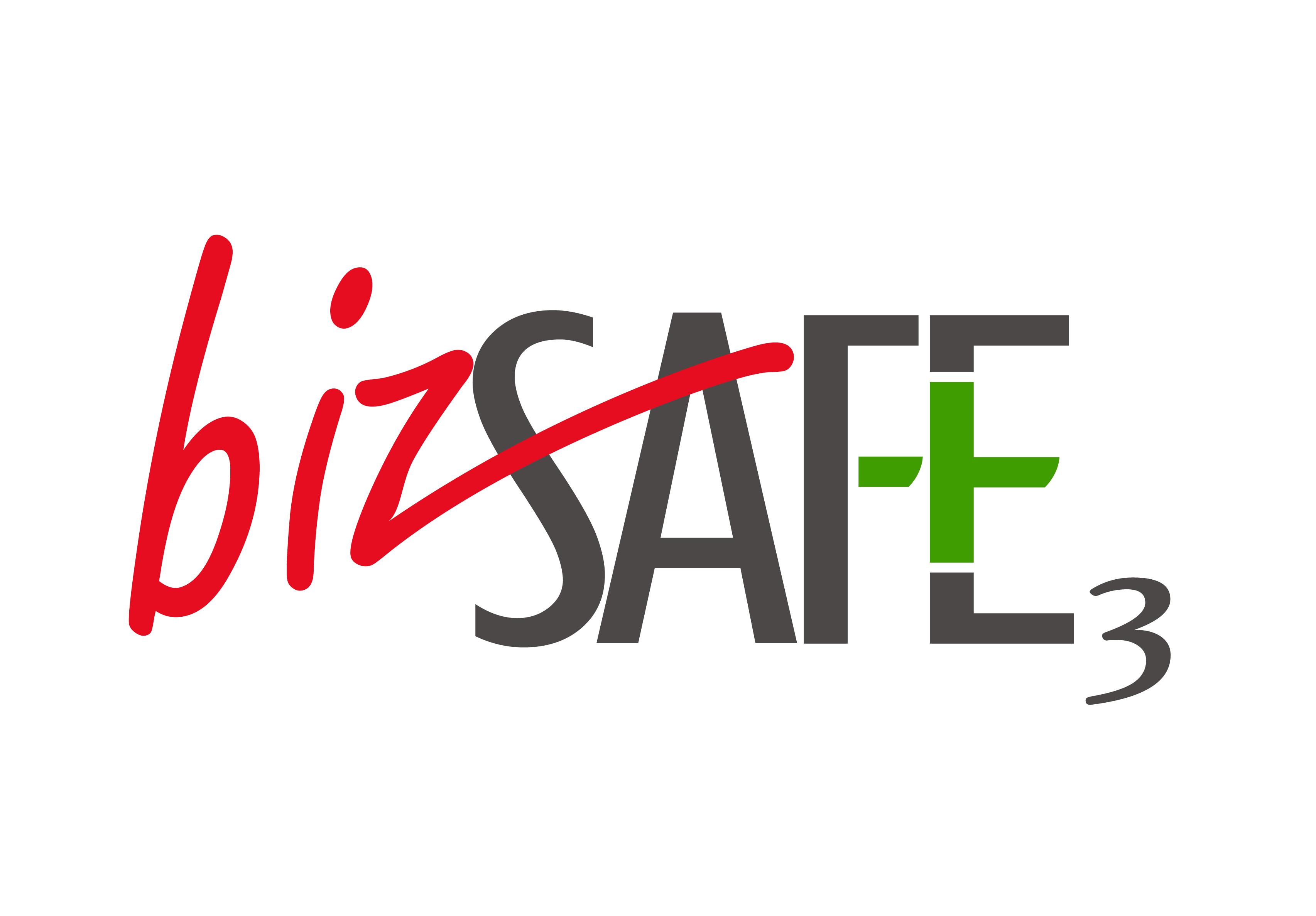 Image result for bizsafe3