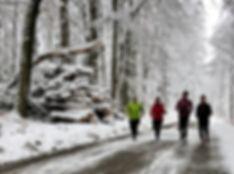 Laufinstinkt+® Hybrid-Trainees beim Lauftraining