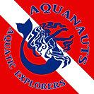 aqua-navy.jpg