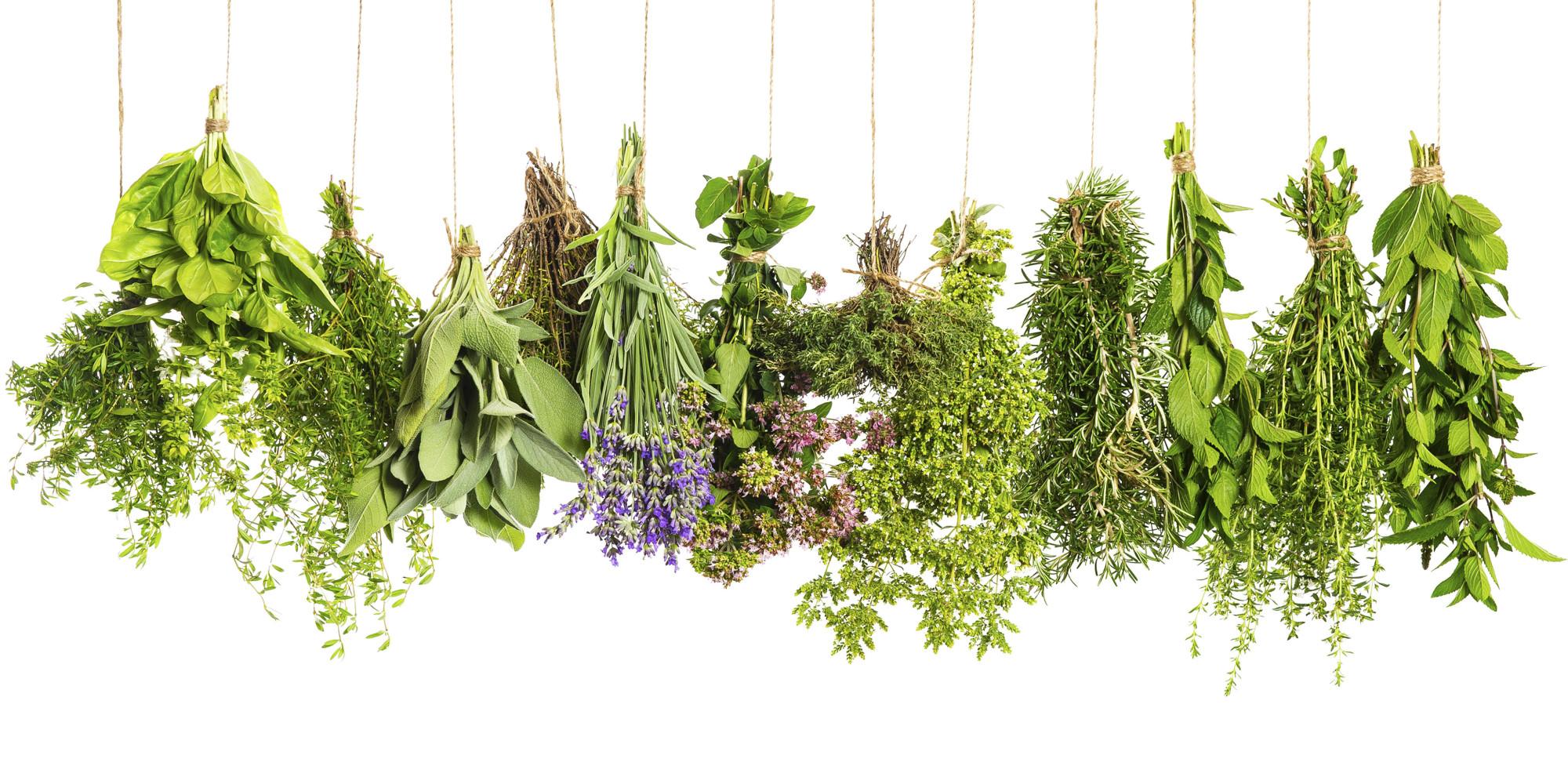 satvik food veggies herbs