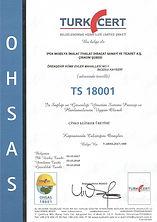 ISO 9001_2015_TS 18001.jpg