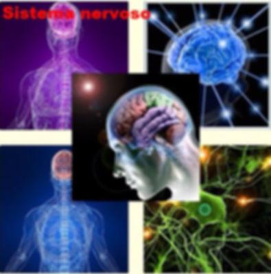 Cura para doenças do Sistema nervoso efeito relaxante e estimulante do organismo, razão pela qual é útil para lidar com o estresse, insônia, tensão nervosa.