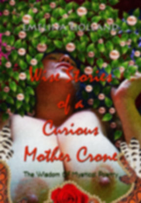 WISE STORIES OF A CURIOUS MOTHER CRONE T