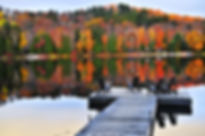 Ontario wooden dock fall leaves.jpeg