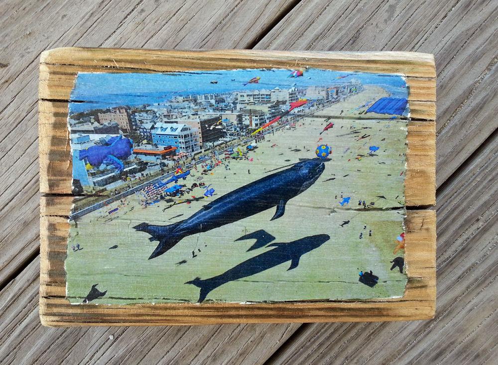 whale kite.jpg