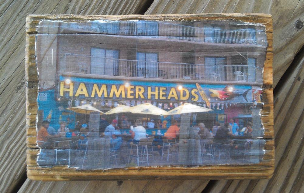 hammerheads.jpg