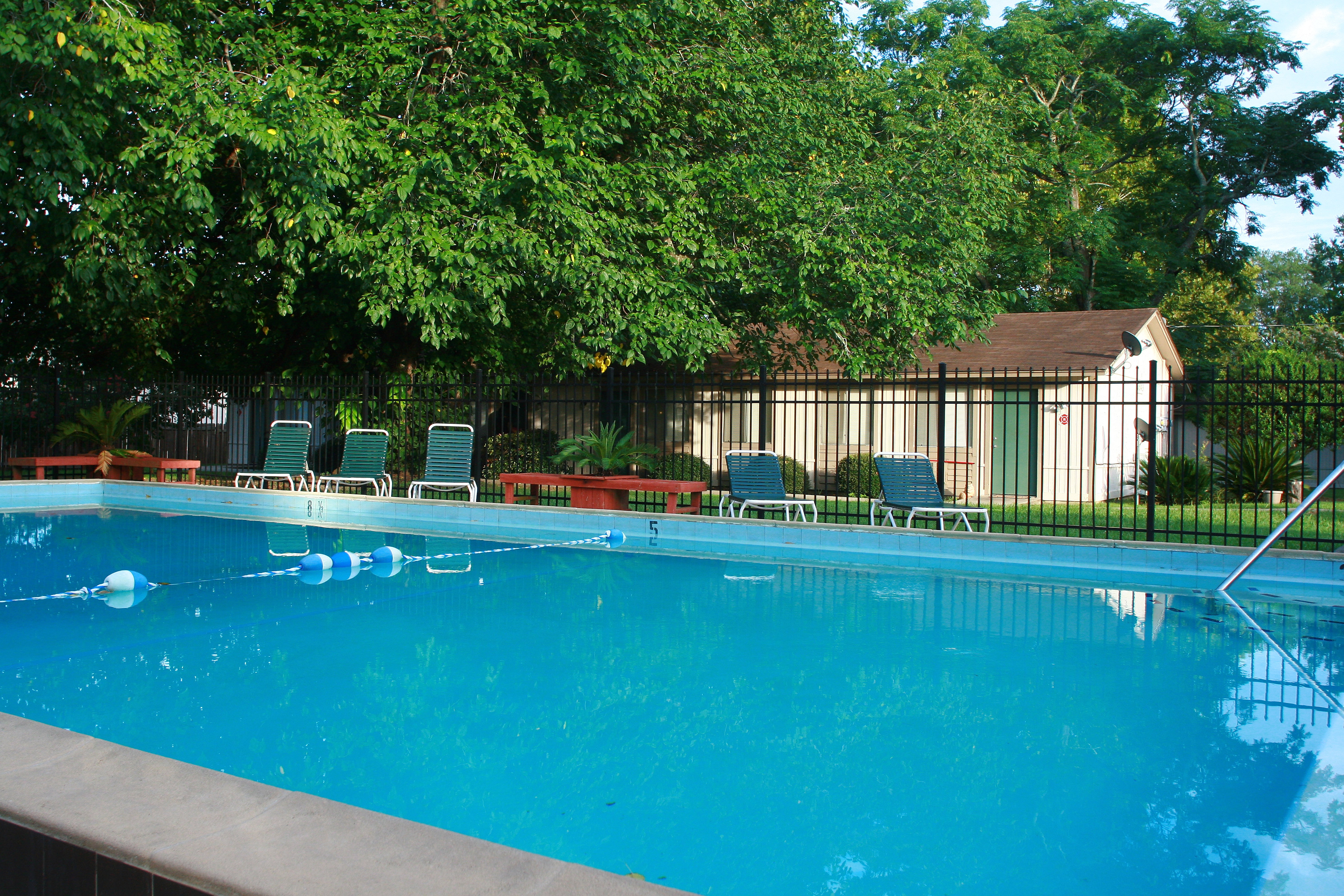 Tallahasseapartments sparkling pool jpg for Tallahassee pool builders