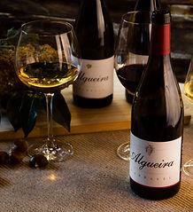 Algueira wine, Algueira vino, cata de vinos con Algueira, El mejor vino de la Ribeira sacra. Best winery in Ribeira sacra.