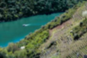 Enoturismo cañón del Sil, Enoturismo cañón del Sil con Algueira. Viaje en rio Sil con Algueira. Boat tour in ribeira sacra.