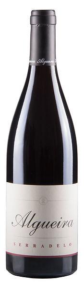 Serradelo 100% Brancellao. Spanish wine from Galicia. Bodega Algueira en Ribeira Sacra.