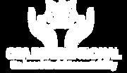 OSA Logo white.png