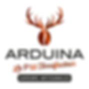 Logo-Arduina_Quadri-Dégradé-Cuivre.png