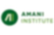 Amani Institute.png