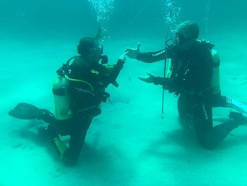 Dykkerbillede.jpeg