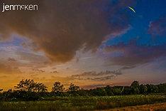 Fireflies on a summer night