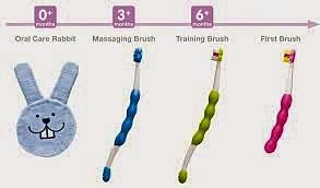 kit de escovas para cada fase da MAM