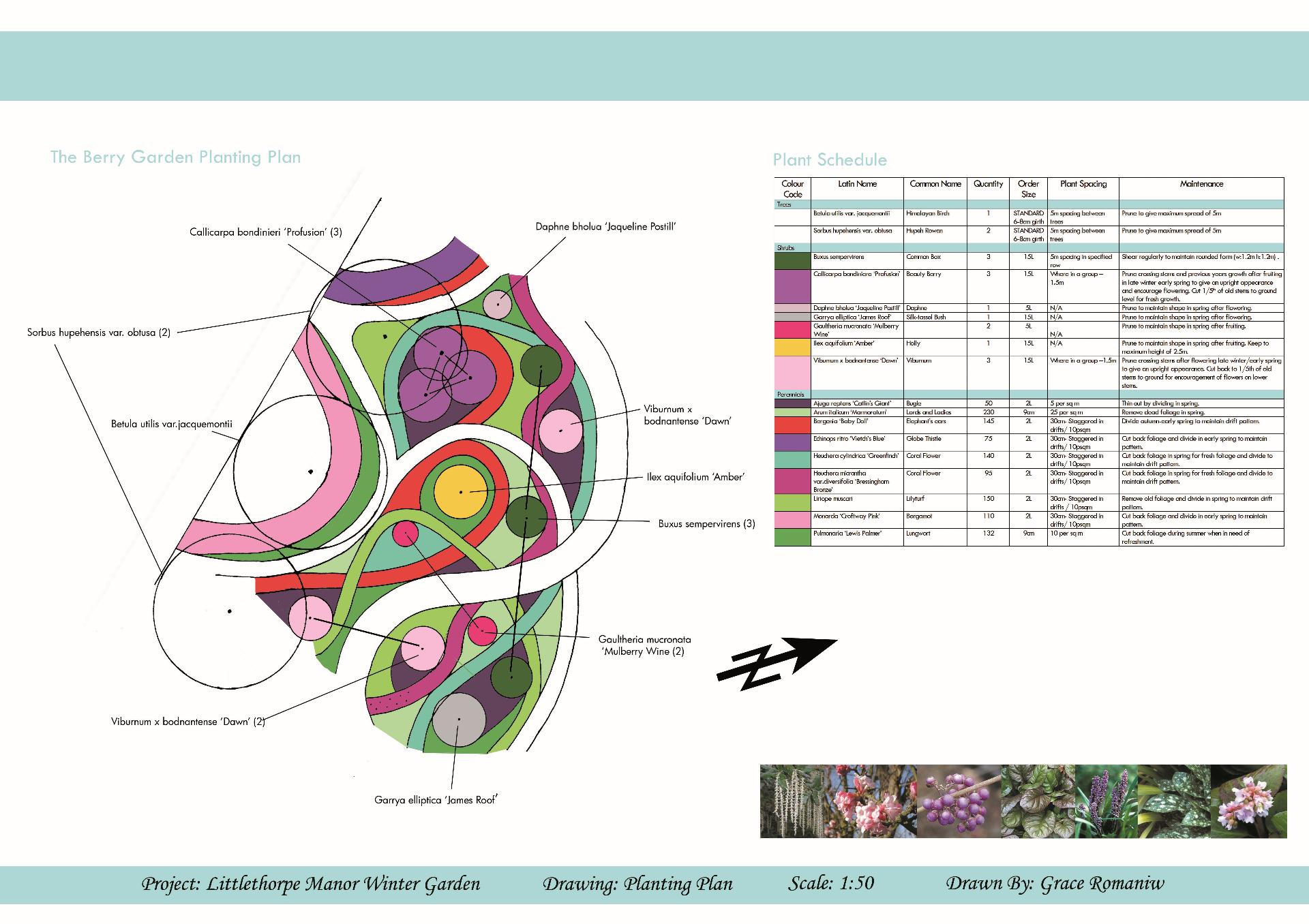 Awesome Plan Designer #1: 39f12b_d306fcf7df1240009f88ca42ac825b74.jpg