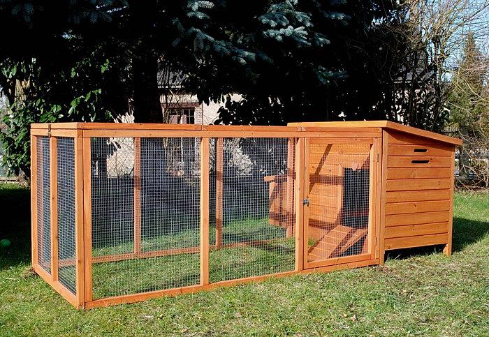 poulailler 3 poules avec enclos. Black Bedroom Furniture Sets. Home Design Ideas