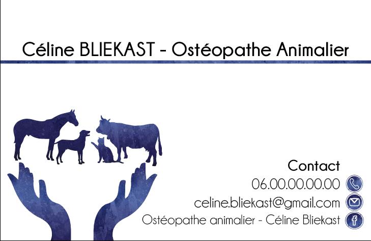 Carte De Visite Realisee Pour Une Etudiante Osteopathe Animalier Le Numero Telephone A Ete Change