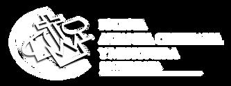 ACYM logo site.png