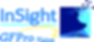 Insight-Logo-with-GFPro (1).png