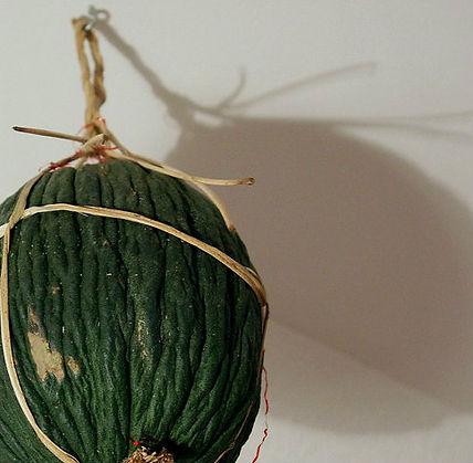melone purceddu