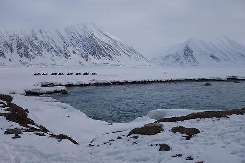 туры на шпицберген арктика северный олюс