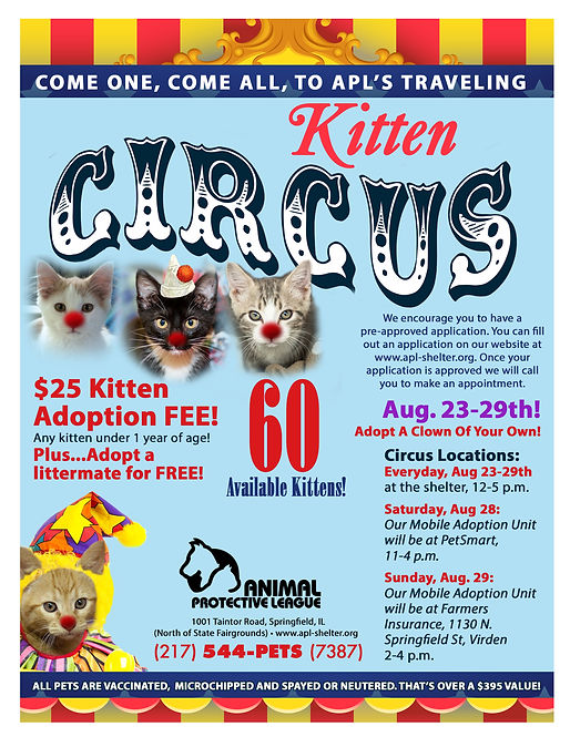 2021 Kitten Circus Flyer.jpg