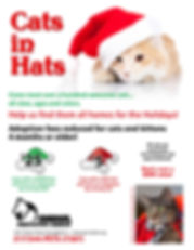APL Cats in Hats 2013.jpg