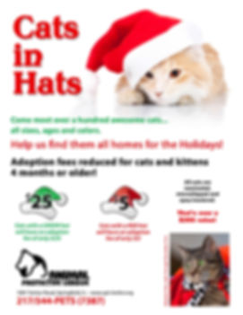APL Cats in Hats 2013.jpg
