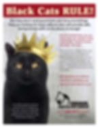 Black cats Rule R1.jpg