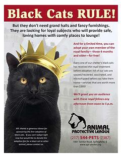 Black cats Rule R1.jpg