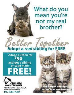 Better Together Flyer REVISED Final.jpg