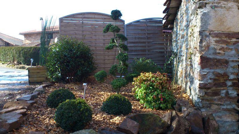 Massif zen le bambou star du jardin zen with massif zen for Massif jardin zen