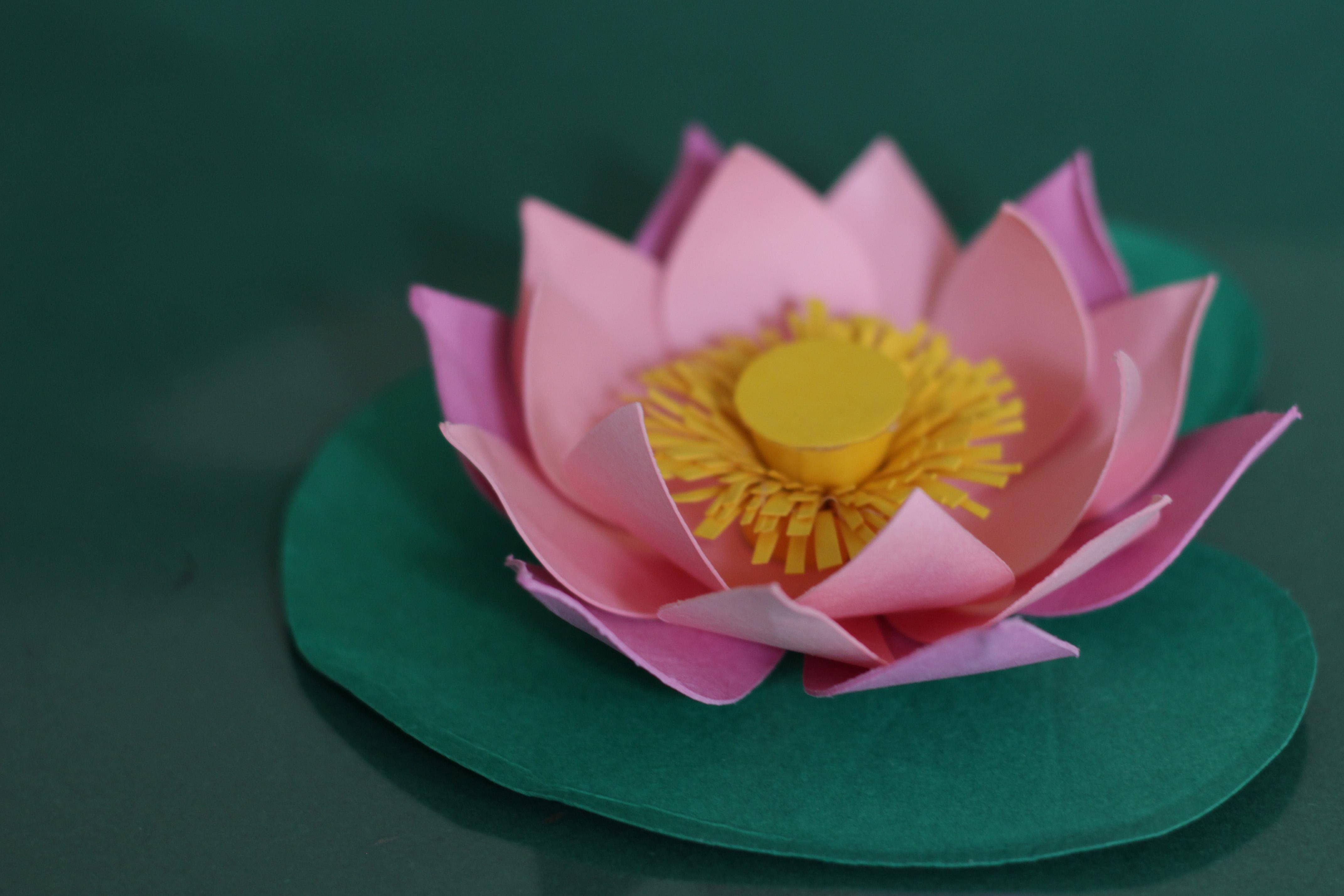 Лотос фото цветок из бумаги
