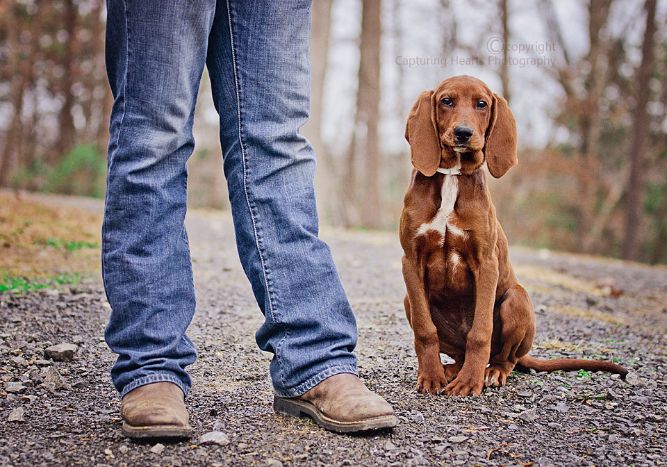 Redbone Coonhound Man and his do hunting boots red dog boy and his dog ...