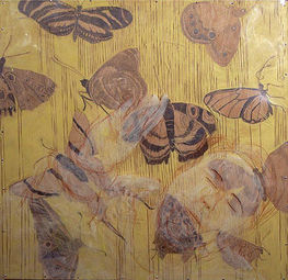 butterflyrain
