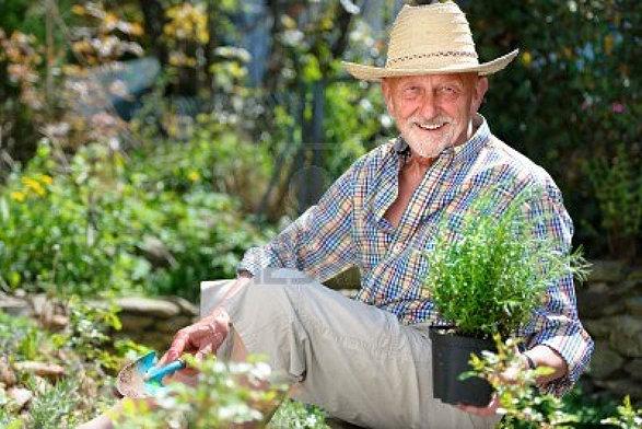 SENIOR GARDENERS, HOW to PUT TOGETHER a                     SENIOR COMMUNAL FARM