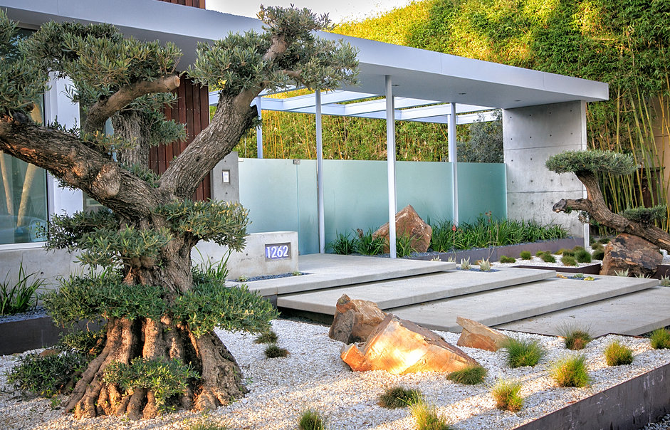 Grounded modern landscape architecture san diego for Contemporary landscape architecture