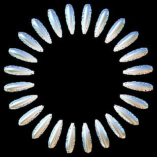 WPD_logo_6-20_blk_rev_March16_01.png