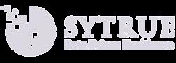 Sytrue Logo Navigesia.png