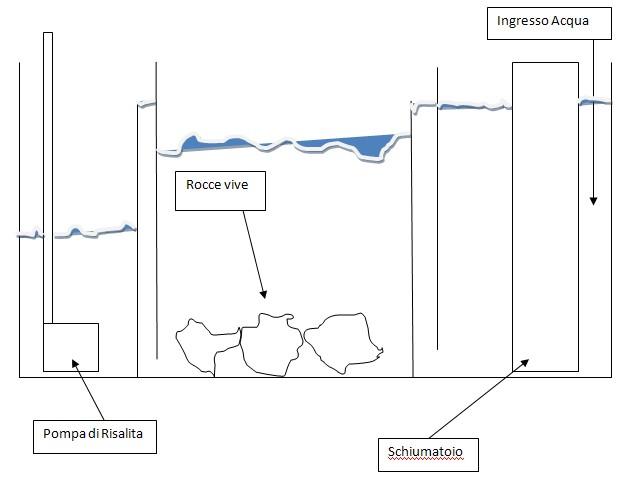 Mobiletto Acquario Fai Da Te : Acquari su misura ocean acquario znr