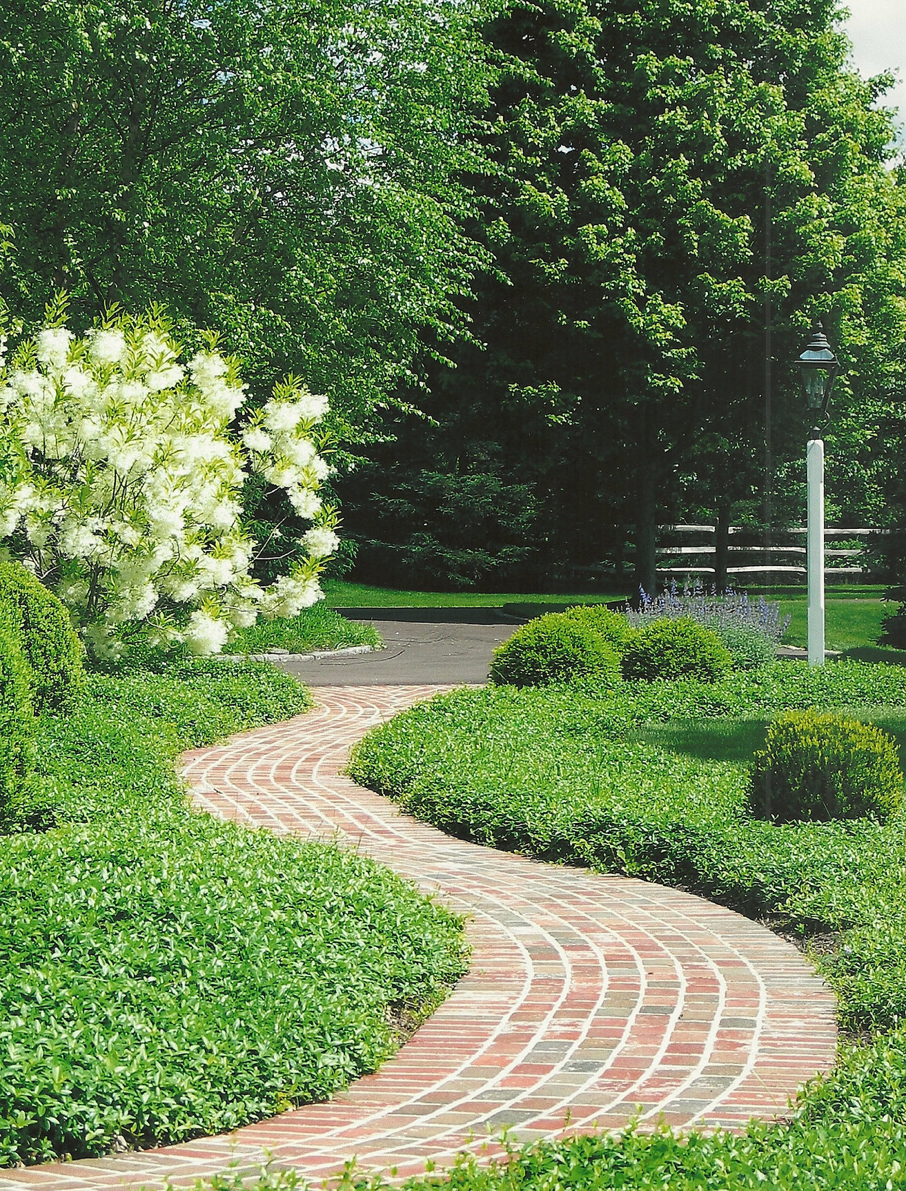 Rolling green landscape design for Green landscape design