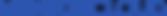 MENTORCLOUD LOGO - Blue.png