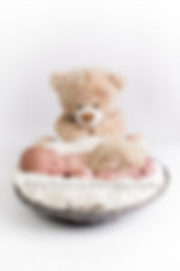 Newborn in basket with teddy, large teddy prop in professional photo shoot, professional photography baby, newborn