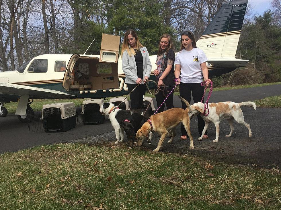 3/16/16 - 4 Dogs - 4.5 hrs - 692 mi